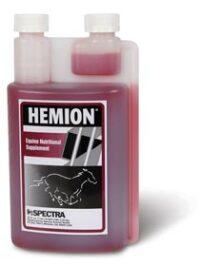 Hemion - Dressage