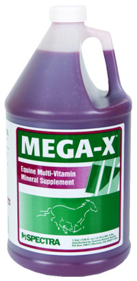 Mega-X - Wellbeing - Multi Vitamin