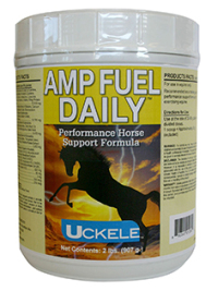 Amp Fuel Daily - Western Riding