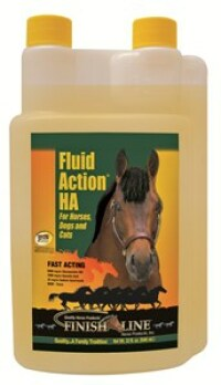 Finish Line Fluid Action HA - Thoroughbred Racing