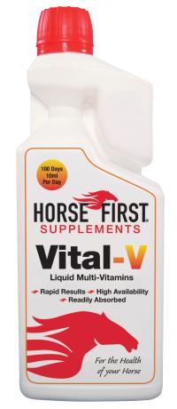 Vital V - Endurance