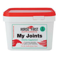 My Joints - Western Riding
